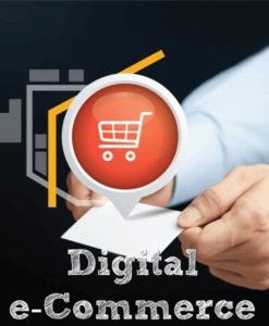 Digital E-Commerce Service