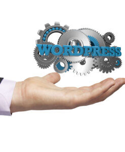 Wordpress Website Service